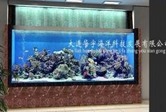 哈尔滨观赏鱼缸