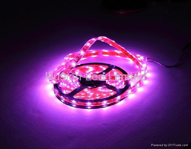 Led Flexible Strip Lights 1