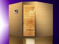 corner traditional steam sauna room
