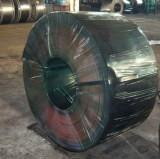 Cold-Roll Galvanized Steel Sheet in Coil(black annealing)