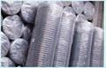 鍍鋅電焊網
