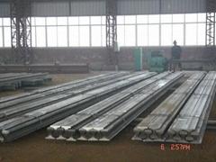 Supply kinds of steel rail