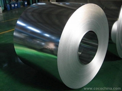 Supply kinds of galvanized and prepainted steel sheet