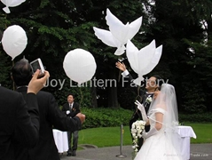 Bio White Dove Balloon