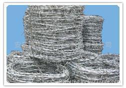 razor wire 4