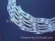 razor wire 5