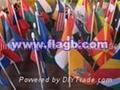 hand flag 2