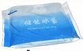 生物冰袋  冷冻冰袋  胶体冰 蓝冰 1