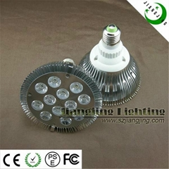 12*1W LED Spotlight