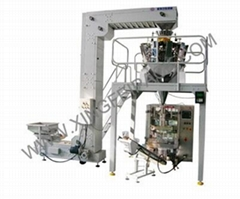 Automatic Dry Fruits Weighing and Packing Machine