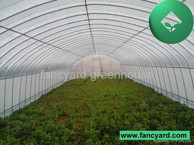 Greenhouse Green House House Green Economical Plastic