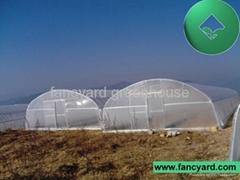 plastic greenhouse