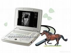 兽用全数字超声诊断仪(笔记本式)