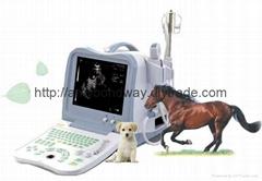 獸用超聲診斷儀