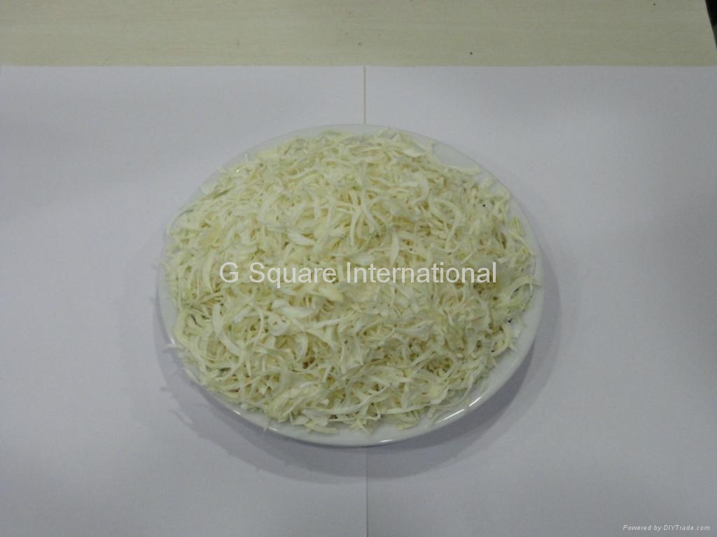 Dehydrated / Dried Onion 3