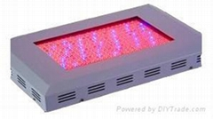 300W LED grow Light/LED plant grow light / LED panel grow Light