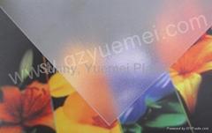 Polycarbonate Abrasive Sheet