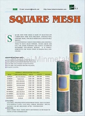Square Mesh