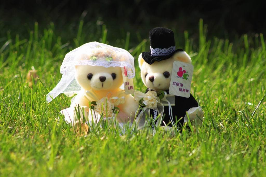 COCO Plush toy Bride and groom valentine bear - bear114 - HPPLGG ...