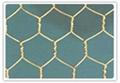 重型六角網