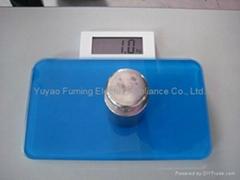 电子人体秤 HD-660A