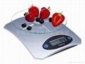电子厨房秤 CM-101