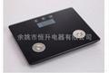 电子脂肪秤 KF801