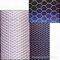 Stainless Steel/Galvanized Hexagonal Wire Netting