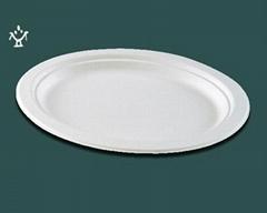 玉米澱粉骨盤