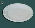 9''round PSM plate