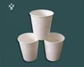 Corn starch cup