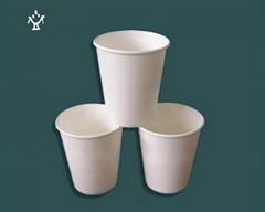 一次性玉米澱粉可降解環保型杯子