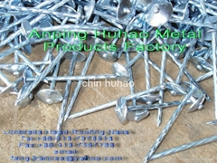Ga  anized roofing nail