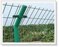 桃型柱護欄網
