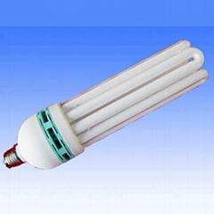 6U Energy Saving Lamp (LW6U02)