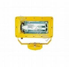BFD8100B   井场防爆照明系统(BFD8100B)