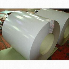 PPGI Coil / Pre-painted Steel Coil