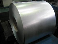 HDG Coil/Hot-dip galvanized coil /galvanized steel coil