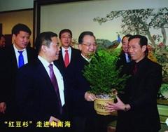 江蘇紅豆杉生物科技有限公司