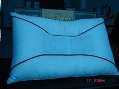 红豆杉保健枕