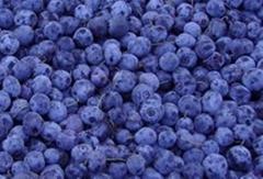 Blueberry Anthocyanin