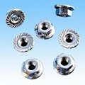 White Iron Flange Nuts with Nickel