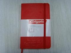 Moleskin Notebooks