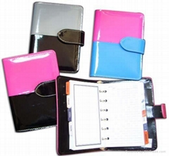 Organizer with Binder