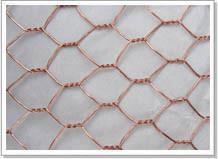 供应各种优质六角网