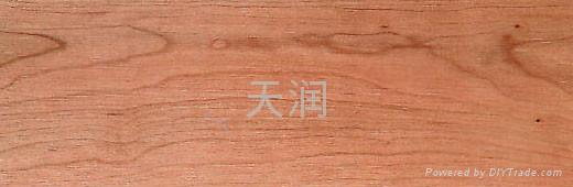 北美进口樱桃实木板材 2
