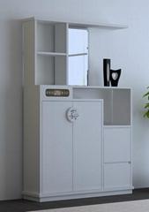 供應環保電子鞋櫃