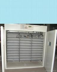 孵化机、科辉孵化设备  孵化器、孵化箱