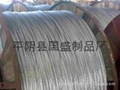 鋼芯鋁絞線 2