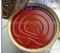 罐裝番茄醬